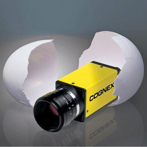 In-Sight Micro Serisi